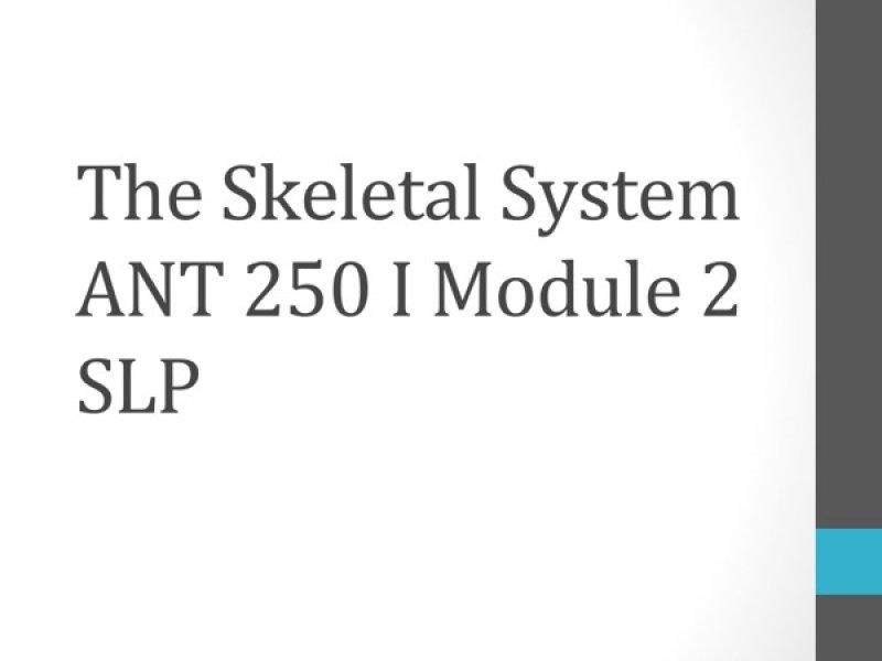 acc 202 slp module 2 Acc202_module_2_-_slpdocx acc202_mod_1_slpdocx get a 8 % discount on an order above $ 100 use the following coupon code : eagle.