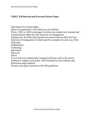 mgt 230 internal paper