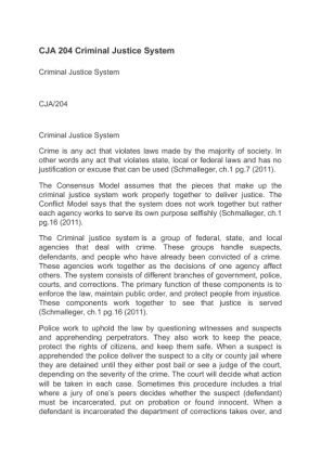 cst the criminal justice system essay Criminal justice term paper topics here's a list of possible criminal justice essay effectiveness of the criminal justice system in jamaica as evidenced by.