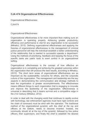 cja 474 organizational effectiveness paper