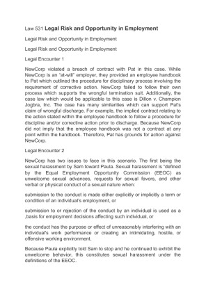legal risk and opportunity in employment essay Labor and employment law: leading an hr audit: assessing employment risks vol 30 no 6 an equal employment opportunity (eeo) audit, (2.