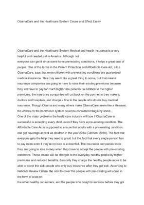 essay on medical care