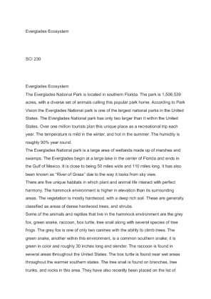 everglades essay paper Dude essay core of engineers, web site here 3 everglades trust, web site here 4 everglades foundation, web site here you will use the information available on.
